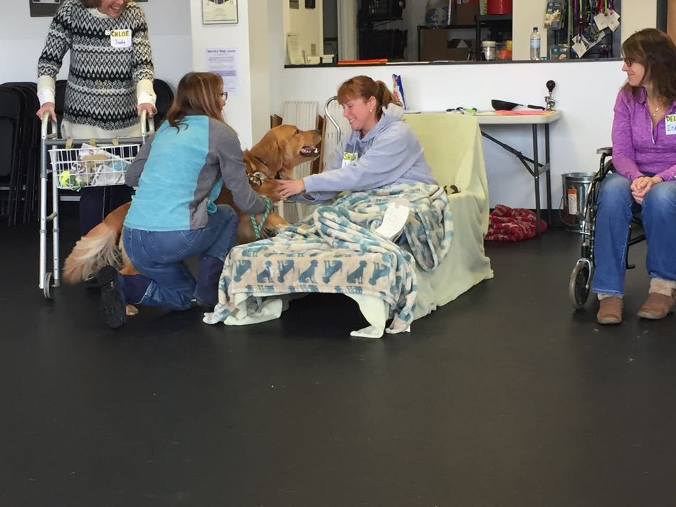Start the New Year Off With Bright Spot Therapy Dog Training