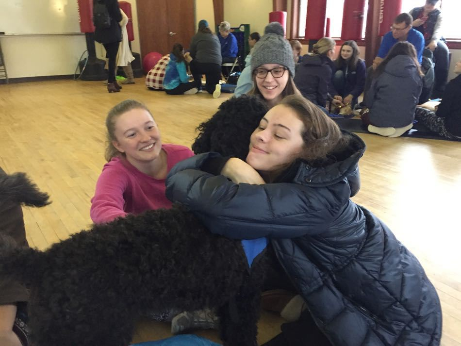 Therapy Dogs Making a Difference During Final Exams