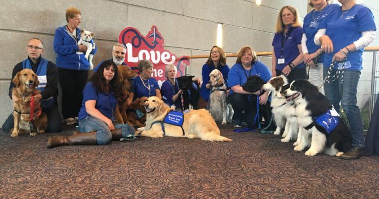 Bradley International Airport Celebrates National Therapy Animal Day
